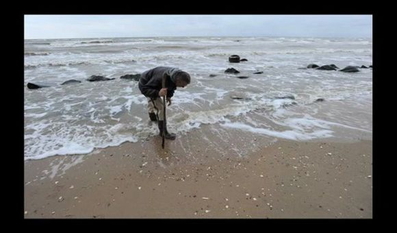 Preview thumbnail for video'Discovering Secrets on the Seashore