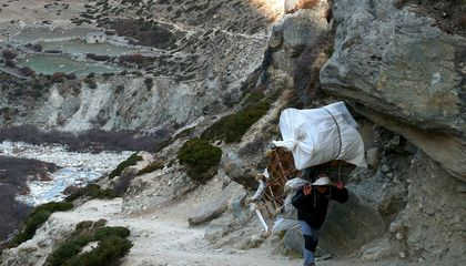 Sherpas Evolved to Live and Work at Altitude