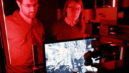 """Mice Watching """"Touch of Evil"""" Teach Scientists About the Mind's Eye"""