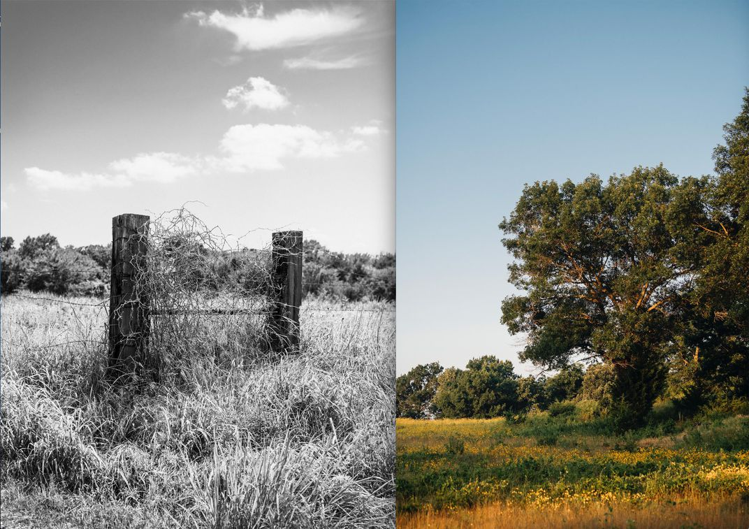 E_landscapes in Seminole County diptych