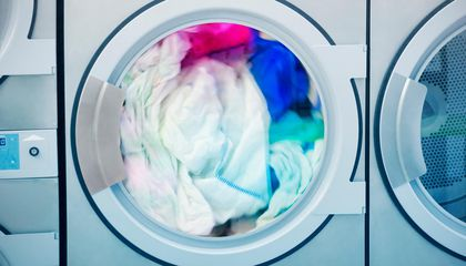 Doing Laundry Can Be Deadly for Clams, Mollusks and Other Marine Animals