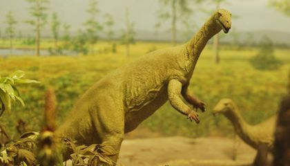 A 1980s Look at Smithsonian Dinosaurs
