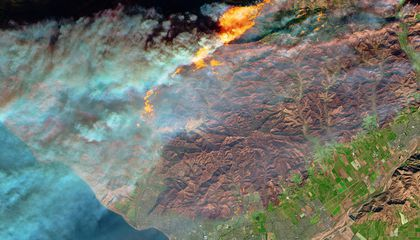 Could Wildfire Ash Feed the Ocean's Tiniest Life-Forms?