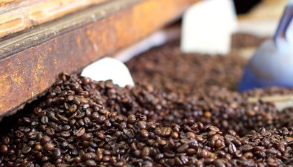 Coming Soon, a College Degree in Coffee