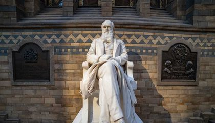 How Darwin's 'Descent of Man' Holds Up 150 Years After Publication