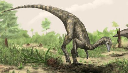 The Most Exciting (and Frustrating) Stories From This Year in Dinosaurs