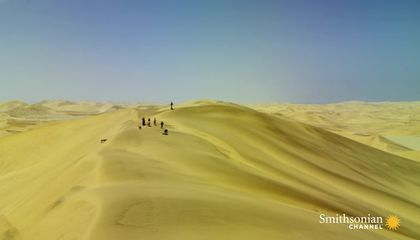 Yes, You Can Go Sandboarding in the Namib Desert