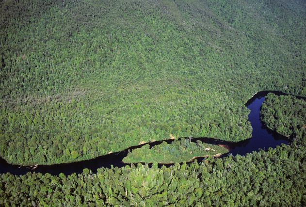 Aerial view of Gordon Rivers
