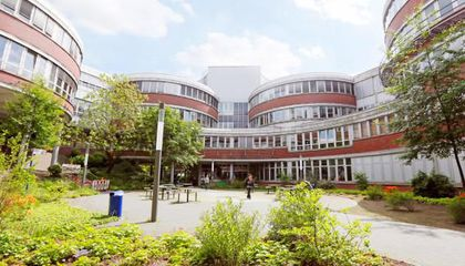 Highlights from the German Astrobiological Society Meeting