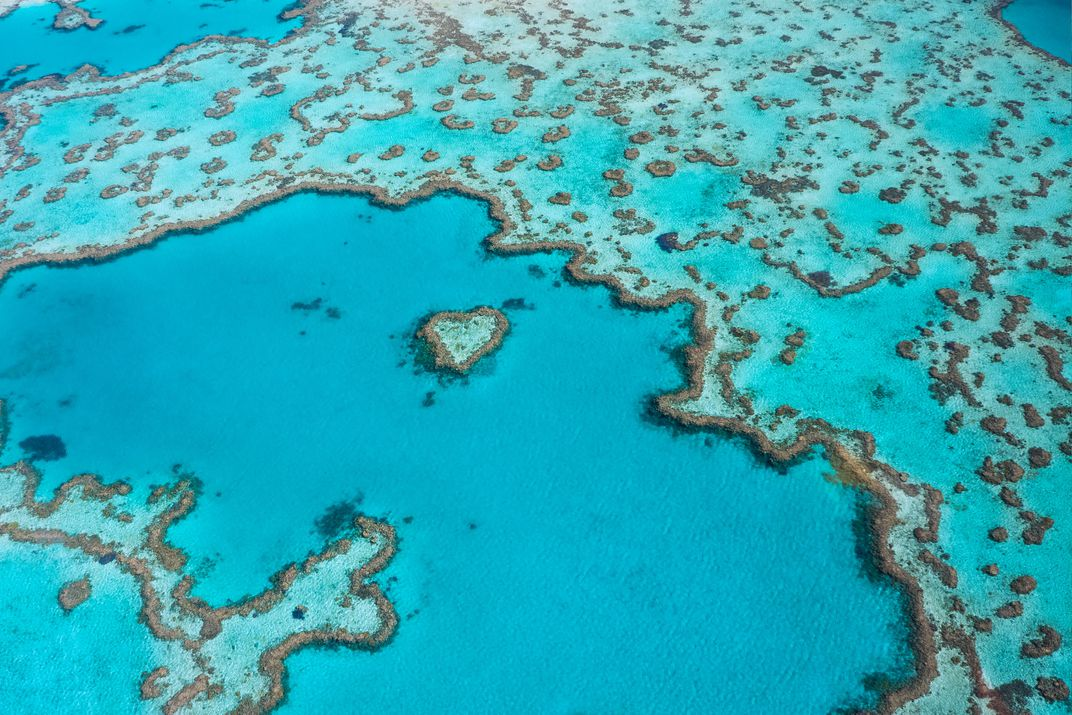 Heart Reef In The Great Barrier Byrneck Istock