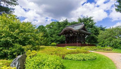Travel the World in a Day at Kew Gardens