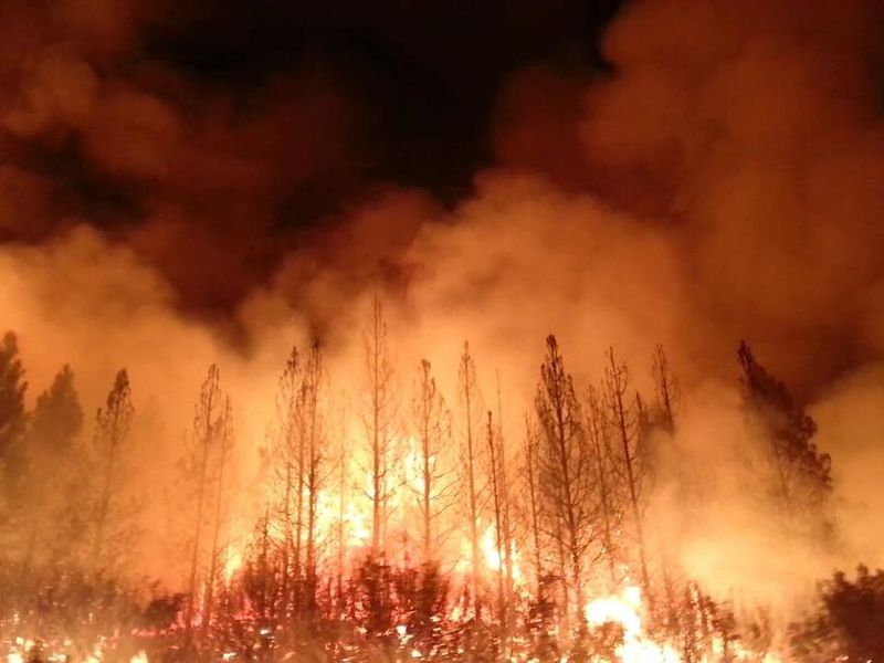 The_Rim_Fire_in_the_Stanislaus_National_Forest_near_in_California_began_on_Aug._17,_2013-0004.jpg
