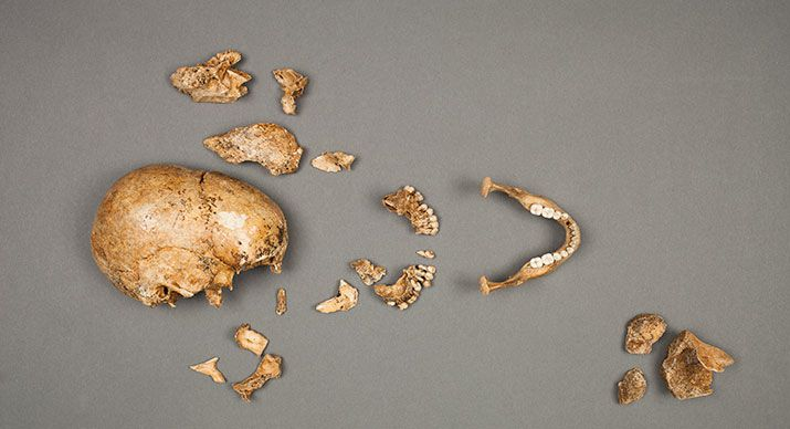 Jamestown Cannibalism: 3 Most Horrifying Cannibal Incidents in History