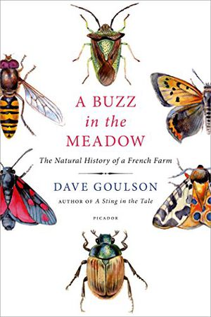 Preview thumbnail for video 'A Buzz in the Meadow: The Natural History of a French Farm