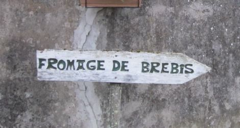 Follow the arrows, find the cheese. This sign led to a sheep farm in the village of Tilhouse.