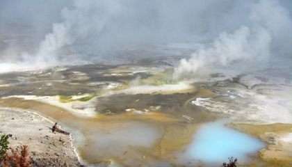Boiling Chickens in Yellowstone's Hot Springs Is Illegal
