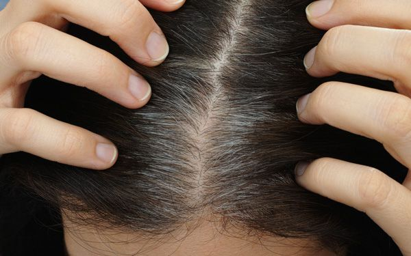 Does stress turn your hair gray?