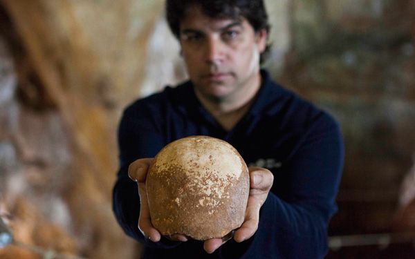 Ancient skull found in Israel may be from Africa