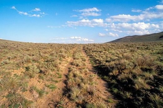 Nine Places Where You Can Still See Wheel Tracks From The