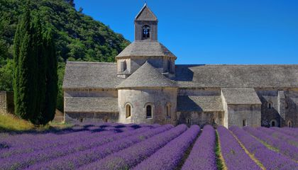 walks-and-cuisine-provence