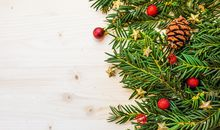 Your Christmas Tree May Be Turned Into Mouthwash One Day