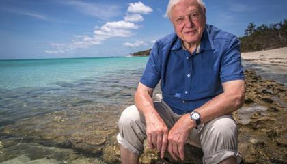 35 Who Made a Difference: David Attenborough