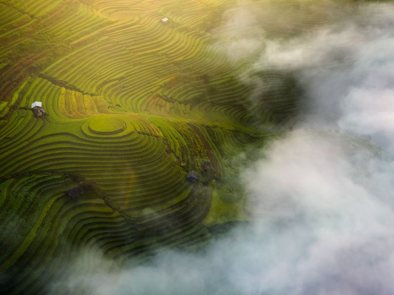 Early sunshine on the ripe rice terraces in Mu Cang Chai, Vietnam
