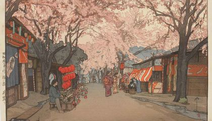 How Cherry Trees Blossomed Into a Tourist Attraction