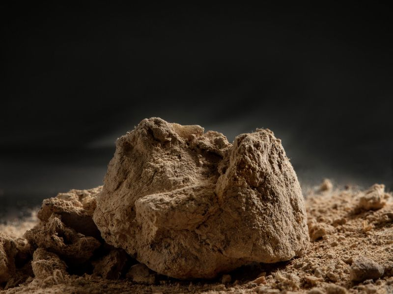 A close-up image of a brown lump that resembles a rock covered in dust