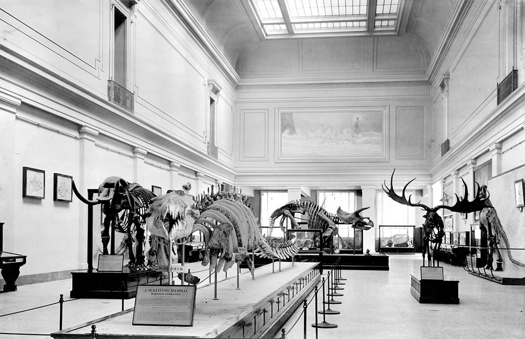 Hall of Extinct Monsters, Smithsonian, 1911