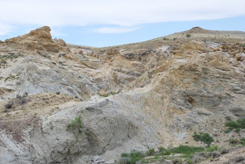 The fossil-rich landscape of Wyoming's Bighorn Basin
