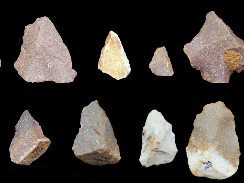 Set Of Stone Tools: When Did Humans Leave Africa?