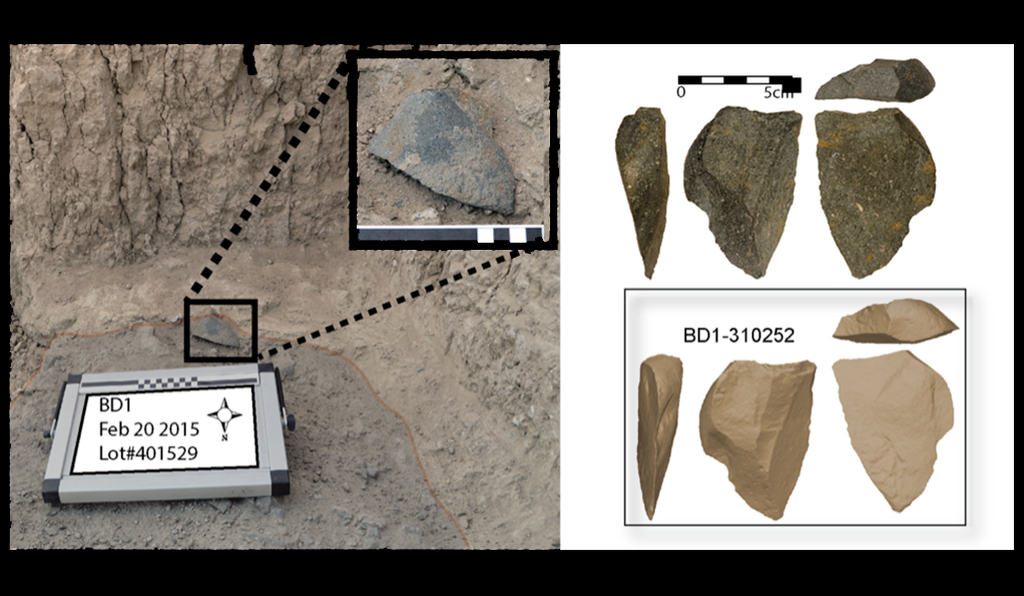 The 2.6 million-year-old stone tools are technologically distinct from more primitive 3.3 million-year-old tools likely used by members of the Australopithecus genus