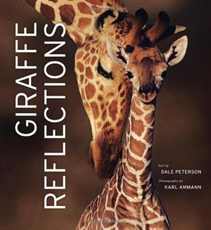 Preview thumbnail for video 'Giraffe Reflections