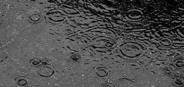 What Makes Rain Smell So Good? | Science | Smithsonian