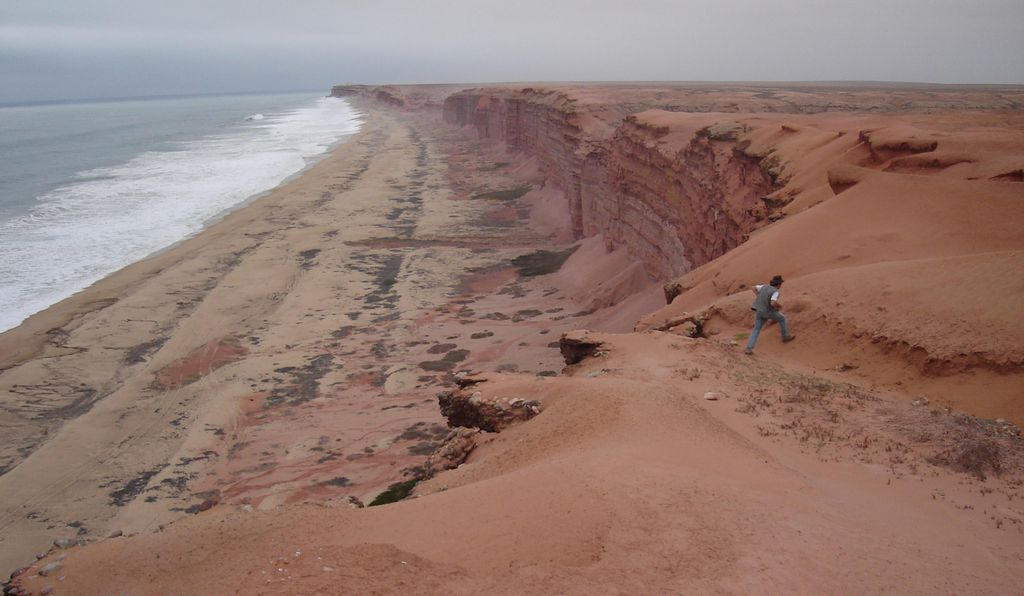 The easily accessible sedimentary rock along modern Angola's sea cliffs is littered with fossilized remains of the life that thrived along the coast tens of millions of years ago.
