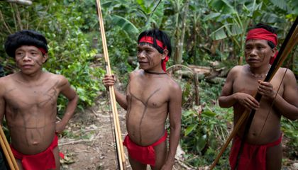 Even an Isolated Amazonian Tribe's Microbes Are Antibiotic Resistant