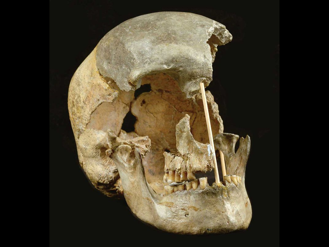 Skull of One of Oldest Known Modern Humans in Europe
