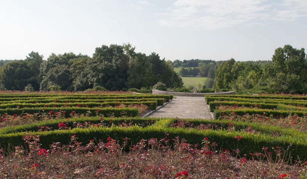 More than 25,000 roses are planted at the Lidice Memorial rose garden.