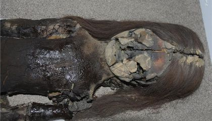 What Have the World's Oldest Mummies Kept Under Wraps?