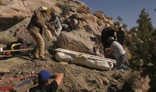 A Pair of Horses Helped Excavate a Hulking Brachiosaurus Fossil in Utah