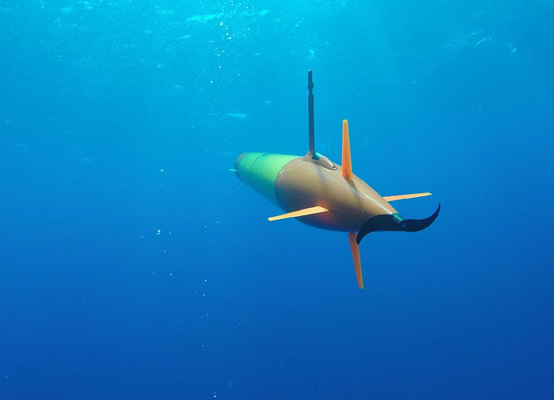 These Underwater Robots Offer a New Way to Sample Microbes From the Ocean |  Innovation | Smithsonian Magazine