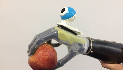 Prosthetic Limb 'Sees' What Its User Wants to Grab