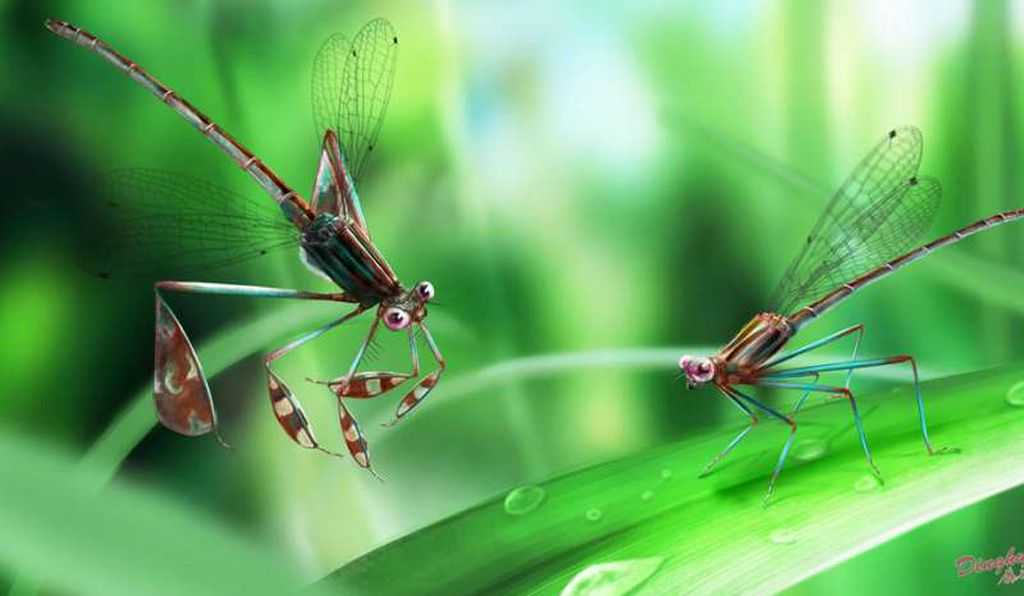 An artist's interpretation of what the damselflies looked like 100 million years ago.