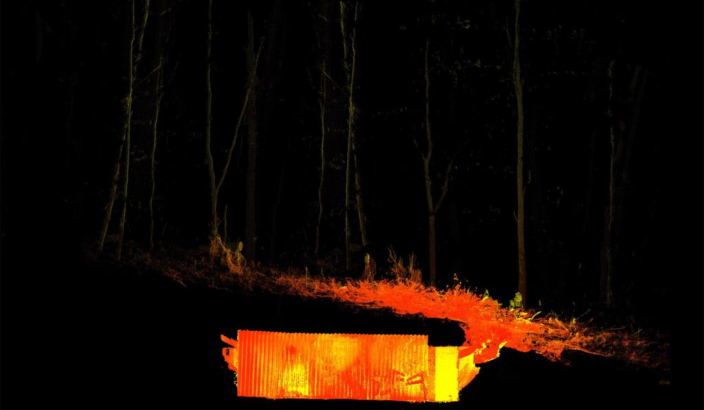 AOC Archaeology took laser scans of the bunker, producing  computer models of its location in the forest.