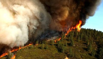 Climate Change Means More Wildfires in the West