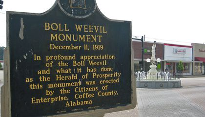 Why an Alabama Town Has a Monument Honoring the Most Destructive Pest in American History