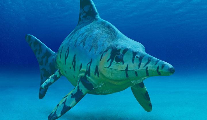 Prehistoric 'Fish Lizards' Kept Warm With Blubber