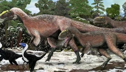 Scientists Discover a Gigantic Feathered Tyrannosaur