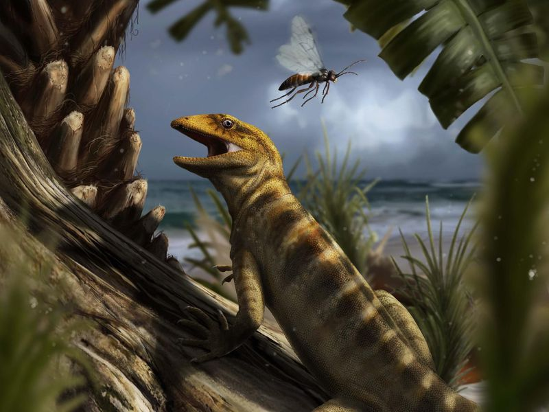 Oldest Lizard Fossil Shows These Reptiles Are The Ultimate